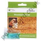 Woodworm Killer